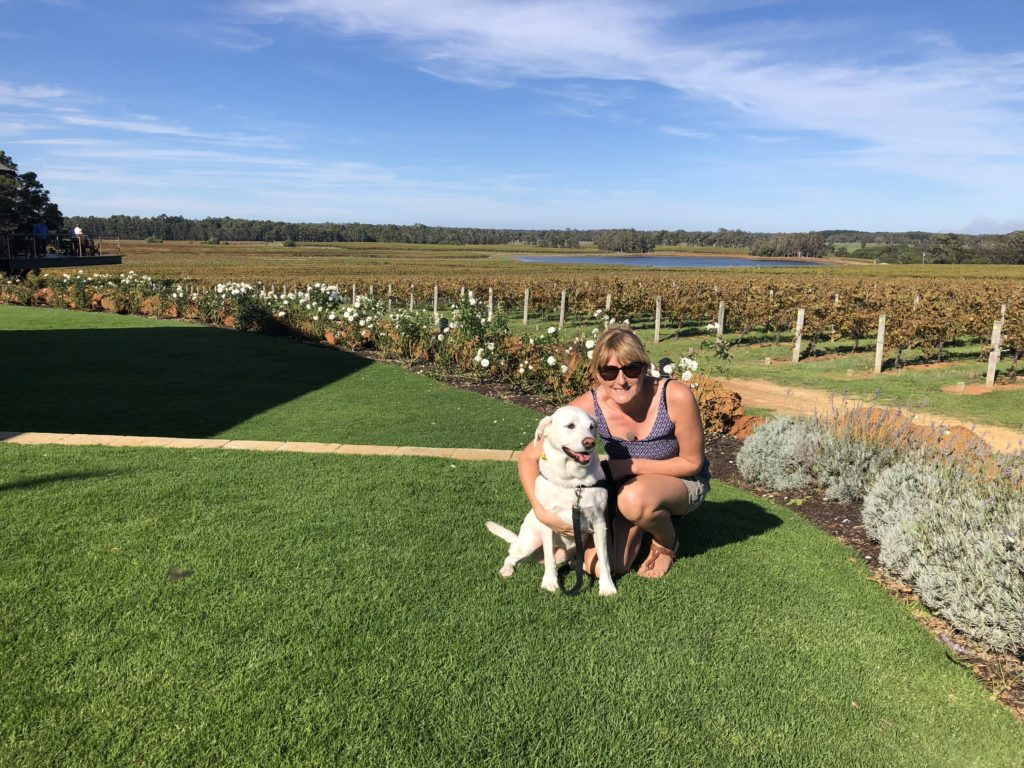 dog friendly eating out winery Watershed Margaret River Western Australia