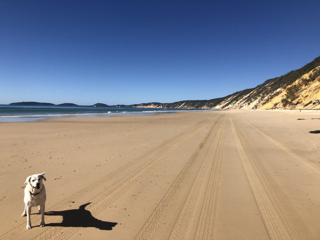 Dog Friendly Rainbow Beach QLD